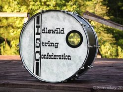 Image for The Idlewild String Confederation