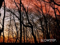 slowstep