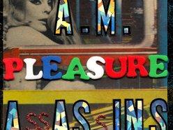 Image for A.M. Pleasure Assassins