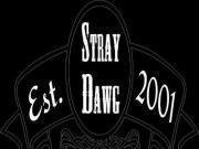 Stray Dawg Records