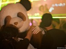 The Panda Conspiracy