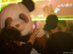 Image for The Panda Conspiracy