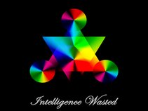 Intelligence Wasted