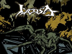 Image for Lycosa