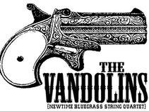 The Vandolins