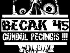Image for BECAK 45