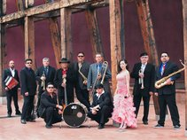 NM Red Wine Band
