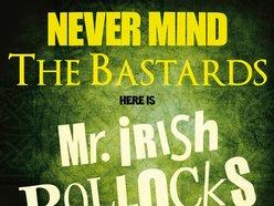 Image for Mr. Irish Bastard