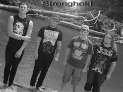 Image for Stronghold