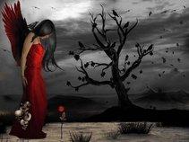 Ravens Rose