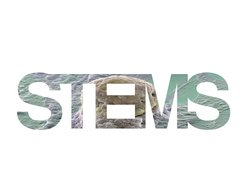 Image for Stems