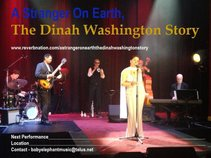 A Stranger On Earth - The Dinah Washington Story