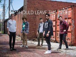 Image for We Should Leave This Tree