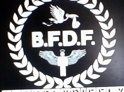 Image for BFDF (BORN FLY DIE FLY)