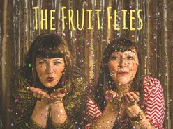 Image for The Fruit Flies