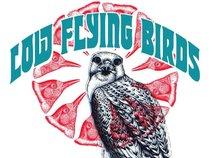 Low Flying Birds