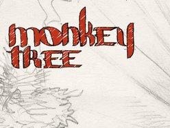 Image for Monkey Tree
