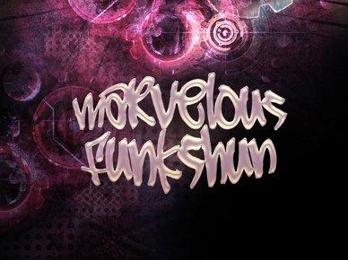 Image for Marvelous Funkshun