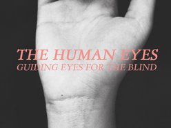 Image for The Human Eyes