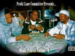 Image for Profit Lane Committee