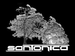 Image for Santonica