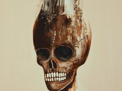 Image for Amido Black
