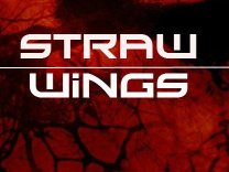 Straw Wings