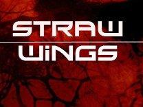 Straw Wings
