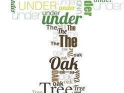 Image for Under the Oak Tree