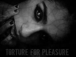 Torture For Pleasure