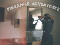Pineapple Adventures