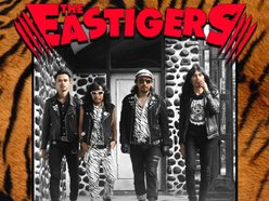 Image for THE EASTIGERS