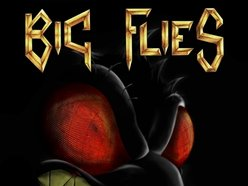 Image for Big Flies