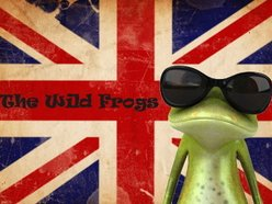 Image for The Wild Frogs