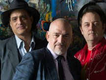Image for The Black Sorrows
