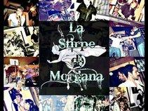 La Stirpe di Morgana