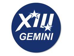 Image for Gemini 13