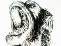 Screaming Monkey Music