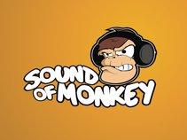 Sound of Monkey