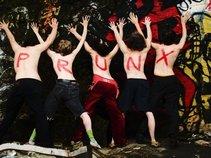 PrunX