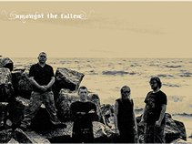 Amongst The Fallen