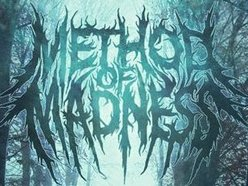 Image for Method Of Madness