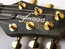Image for Flaxwood Guitars