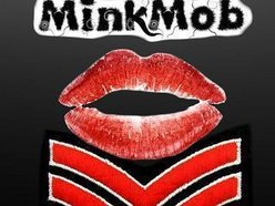 Image for Mink Mob
