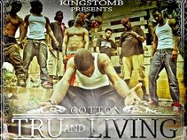 Cotton the Everliving