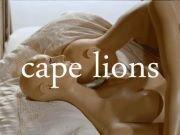 Cape Lions