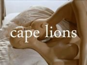 Image for Cape Lions