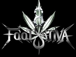 Image for 8 Foot Sativa