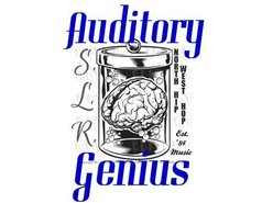 Image for Auditory Genius