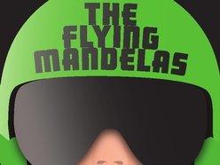 Image for The Flying Mandelas
